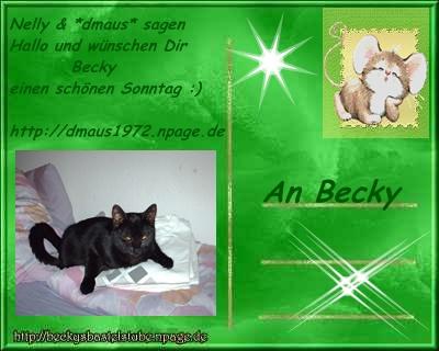 Becks Postkarte