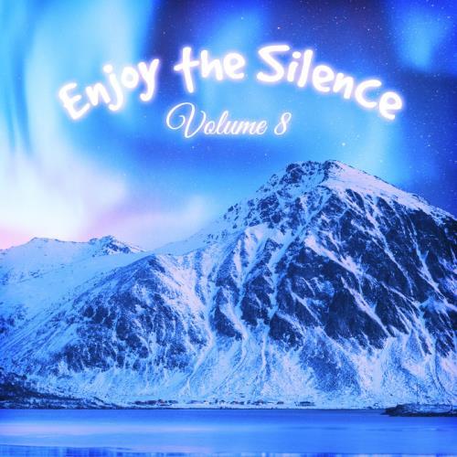 Enjoy The Silence, Vol. 8 (2020)