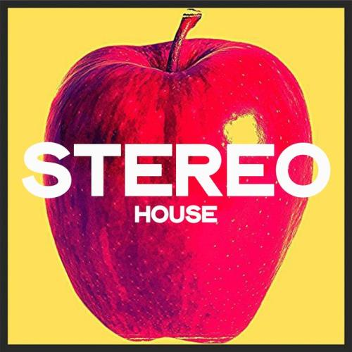 Stereo House: Top House 2020 Winter Selection (2020)