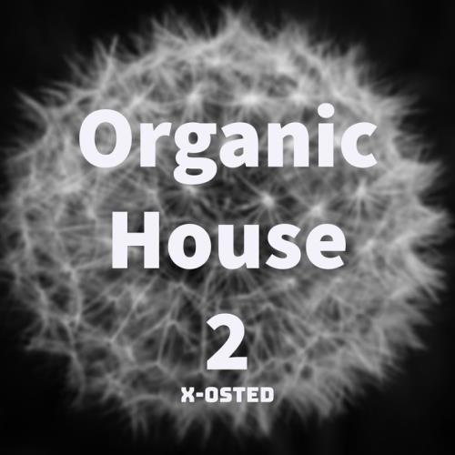 Organic House 2 (2020)