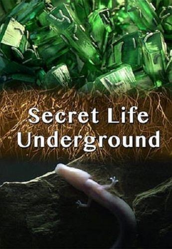 Тайны подземного мира / Secret Life Underground (2015) HDTV 1080i