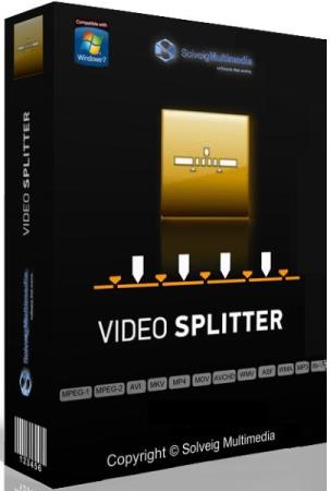 SolveigMM Video Splitter 7.6.2104.15 Business Edition DC 20.04.2021