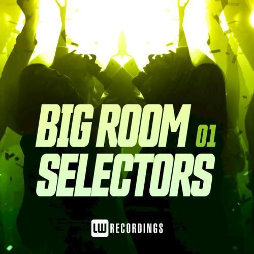 Big Room Selectors 01 (2020)