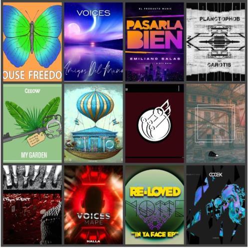 Beatport Music Releases Pack 2393 (2020)