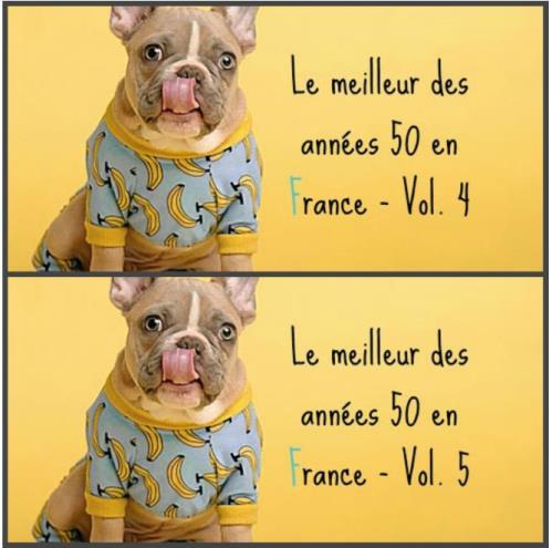 Le Meilleur Des Annees 50 En France Vol 4 — 5 (2020)
