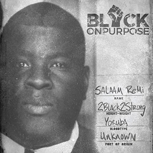 Salaam Remi — Black On Purpos (2020)