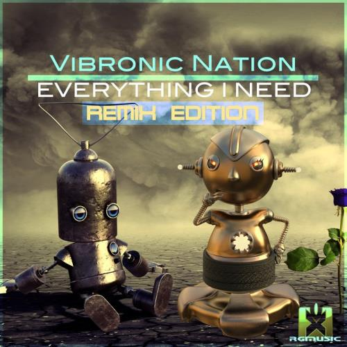 Vibronic Nation — Everything I Need (Remix Edition) (2020)