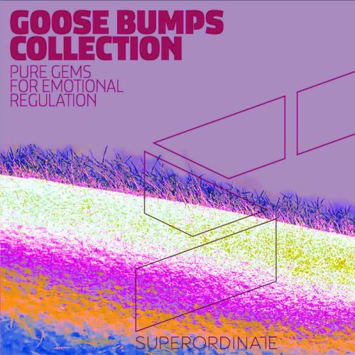 Goose Bumps Collection, Vol. 5 (2020)