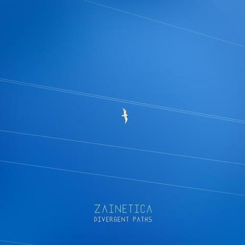 Zainetica — Divergent Paths (2020)
