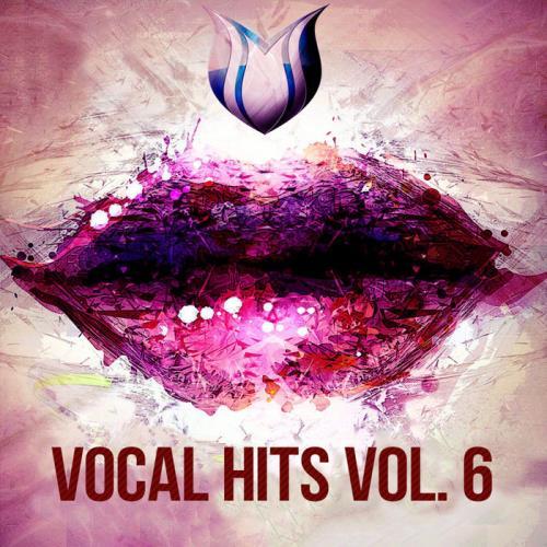 Vocal Hits Vol. 6 (2020)