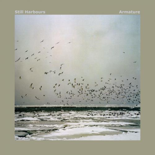 Still Harbours — Armature (2020)