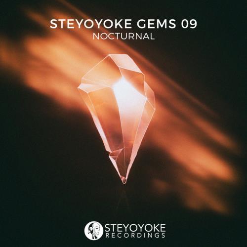 Steyoyoke Gems Nocturnal 09 (2020) FLAC