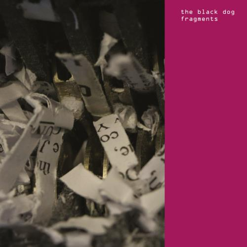 The Black Dog — Fragments (2020)