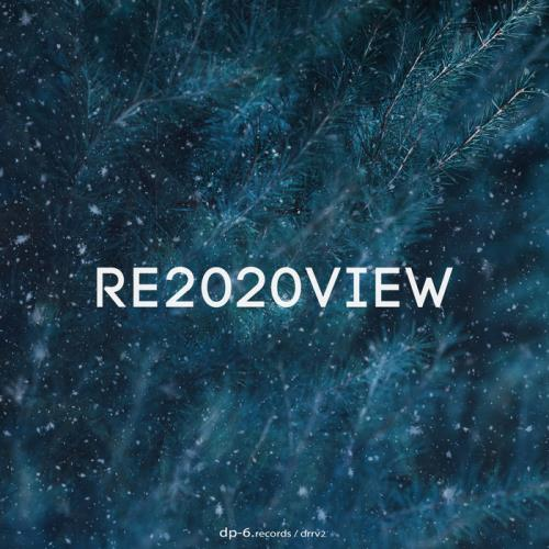 DP-6 — Re2020view (2021)