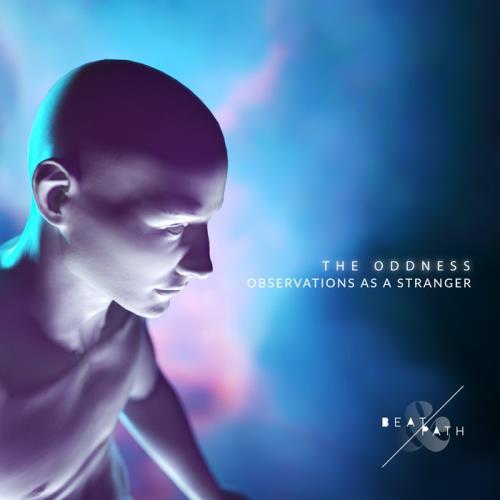 Jamie Stevens — Observations As A Stranger (2020)