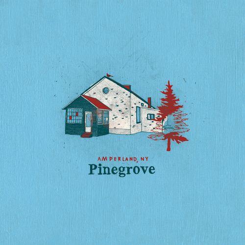 Pinegrove - Amperland, NY (2021)