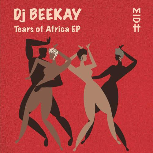 Dj Beekay — Tears Of Africa (2021)