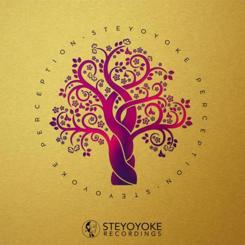 Steyoyoke Perception Vol 8 (2021)