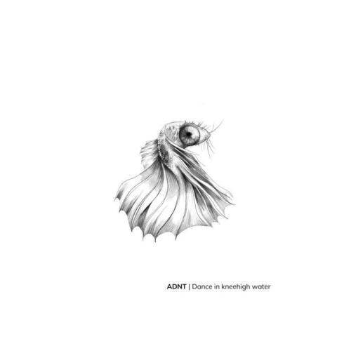 ADNT — Dance In Knee High Water (2021)