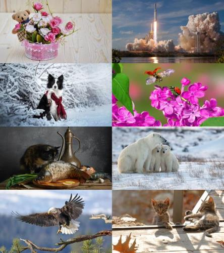 Wallpapers Mix №871