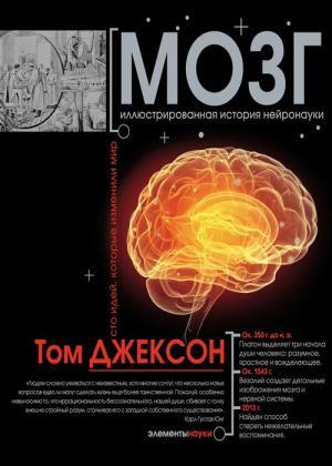 Том Джексон - Мозг. Иллюстрированная история нейронауки