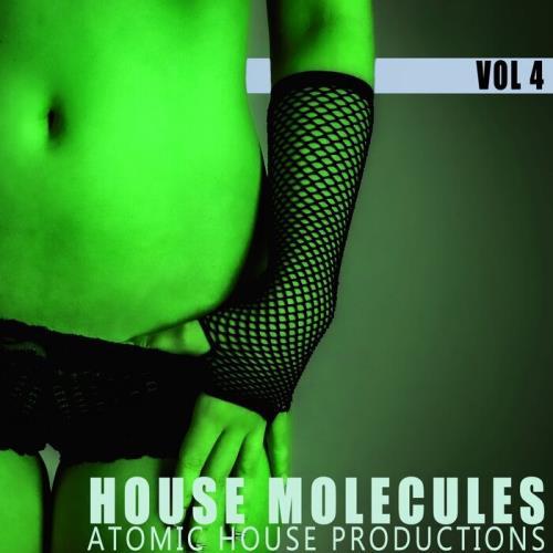 House Molecules, Vol. 4 (2021)